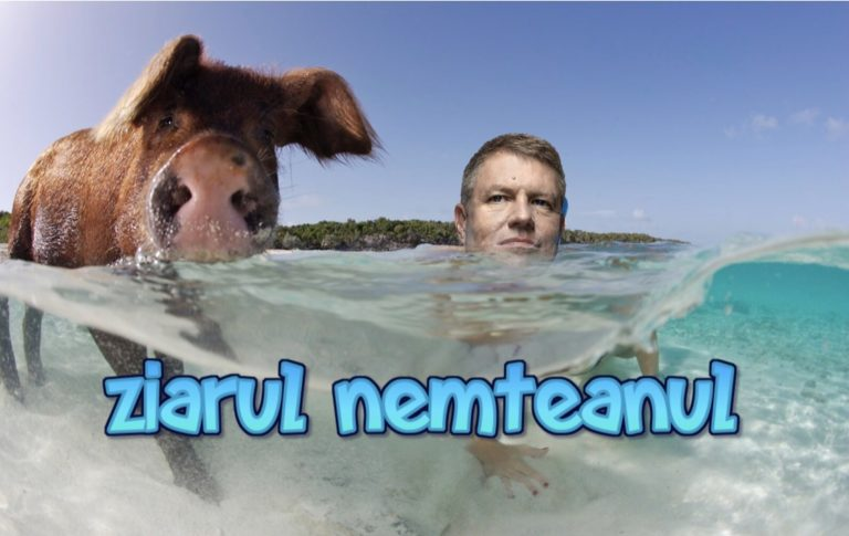 Klaus Monakis sustine porcii vietnamezi : Animale de Companie pentru toti patriotii